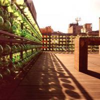 Machiche rooftop deck