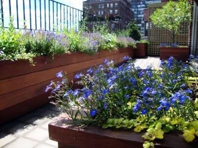 ipe rooftop planters