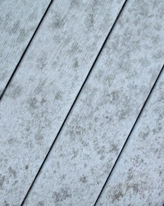 mold on composite decking
