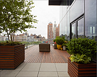 Ipe_rooftop_deck_and_patio-_Organic_Gardener.png