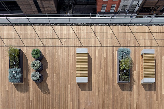 Thermowood decking on rooftop