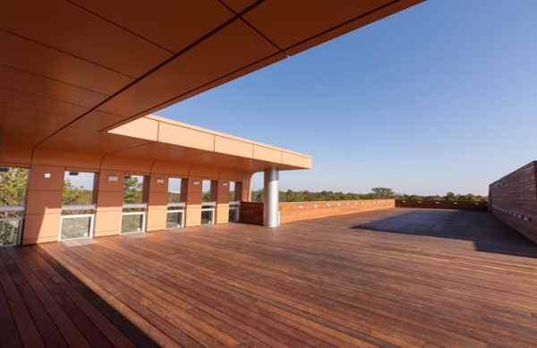 Cumaru hardwood rooftop deck and siding in New Jersey
