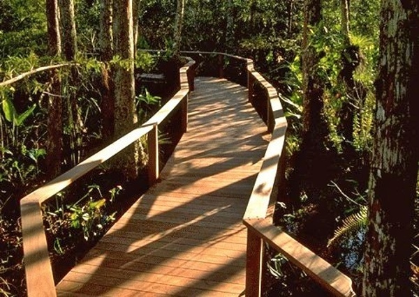 Ipe decking, posts and railings on boardwalk at Corkscrew Swamp Sanctuary